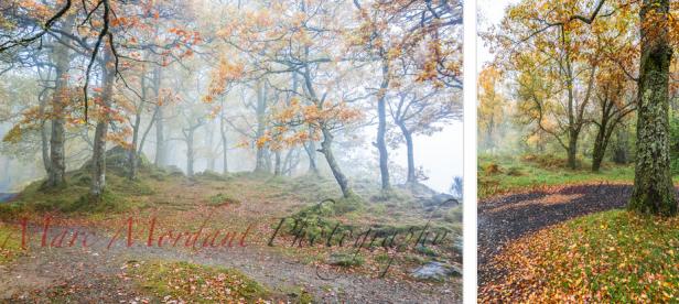 Cumbria lakelands005
